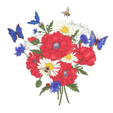 Illustration pour Summer Vintage Floral Bouquet. Greeting Card with Blooming Red Poppies Chamomile Ladybird Daisies Cornflowers Bumblebee Bee and Blue Butterflies. Vector Illustration on White Background - image libre de droit