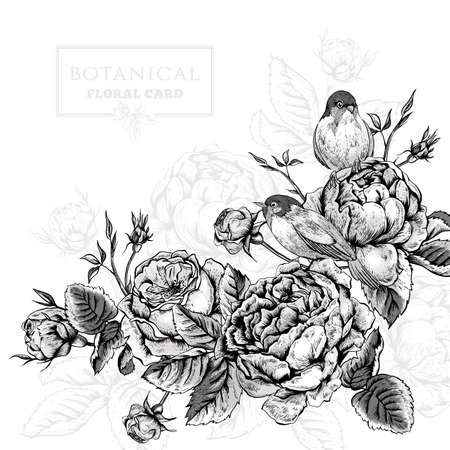 Illustration pour Black and white botanical floral card in vintage style with blooming english roses and birds, vector illustration - image libre de droit