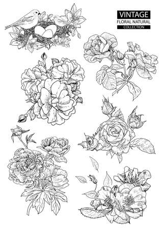 Illustration for Floral outline coloring vector vintage collections - Royalty Free Image