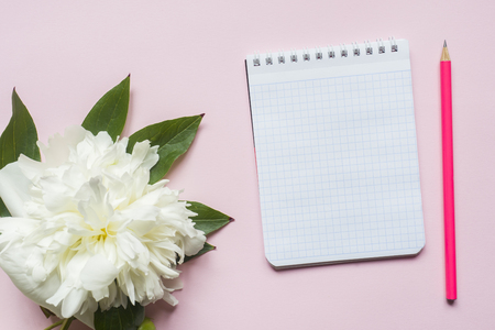 Notepad for text white flowers peony cherry berries on pastel pink background