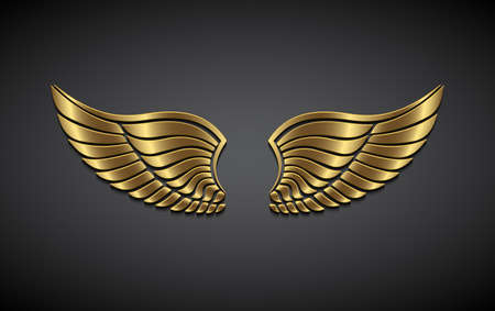 Illustration for Wings from gold on a gray background. - Royalty Free Image