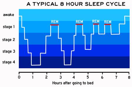 Foto de sleep cycle illustration - Imagen libre de derechos