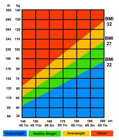 Photo pour body mass index illustration - image libre de droit