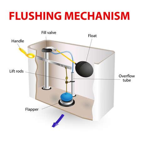 Flush toilet flushing mechanism  vector diagram