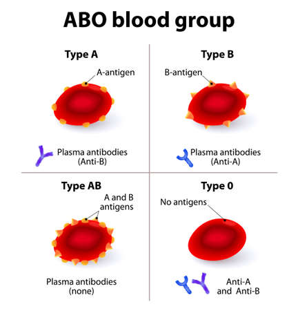 Illustration pour ABO Blood groups. There are four basic blood types, made up from combinations of the type A and type B antigens. - image libre de droit