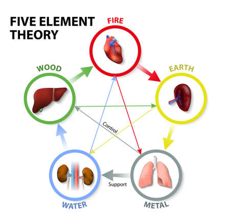 Illustration for Five Element Theory. Oriental Medicine. The five element theory is used in traditional chinese medicine as a way to diagnose and treat illness. - Royalty Free Image