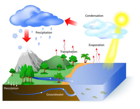 Illustration pour Water cycle diagram. The sun, which drives the water cycle, heats water in oceans and seas. Water evaporates as water vapor into the air. Labeled - image libre de droit