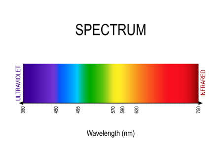 Illustration for spectrum. visible light, infrared, and ultraviolet. electromagnetic radiation. sunlight color. different types of electromagnetic radiation by their wavelengths. In order of increasing frequency and decreasing wavelength - Royalty Free Image