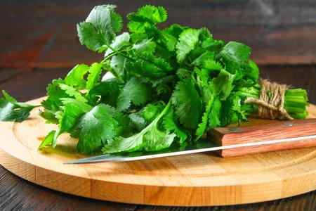 Foto de bunch of fresh cilantro on the boards, fresh herbs on wooden table - Imagen libre de derechos