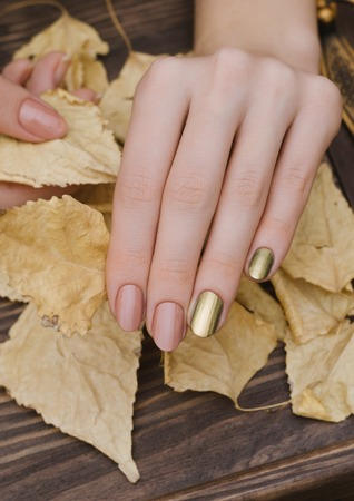 Photo pour Female hands with gold chameleon nail design holding fallen leaves. - image libre de droit