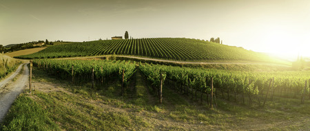 Photo pour Vineyards in Tuscany. Farm house at sunset. Panoramic view - image libre de droit