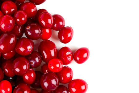 Photo for Cranberry isolated - Royalty Free Image