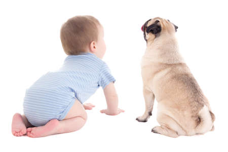 Photo pour back view of baby boy toddler and pug dog isolated on white background - image libre de droit