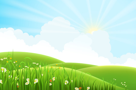 Illustration pour Summer sunny meadow landscape, vector illustration - image libre de droit