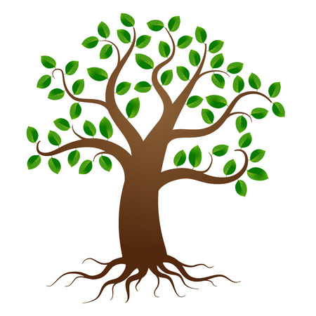 Illustration pour Green tree with roots on white background - image libre de droit