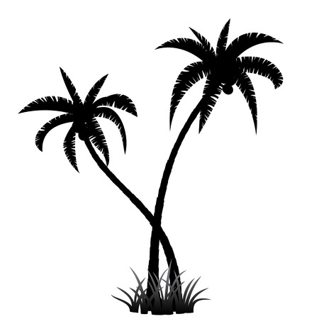 Illustration for Black palm tree silhouette on white background - Royalty Free Image