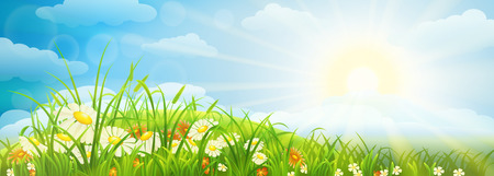 Illustration pour Summer meadow background  with grass, flowers, sky and sun - image libre de droit