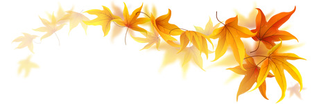 Illustration pour Swirl of falling autumn maple leaves isolated on white - image libre de droit