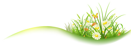 Illustration pour Spring banner with green grass and flowers, vector illustration - image libre de droit