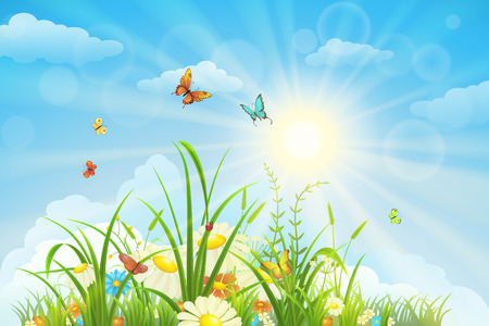 Illustration pour Summer and spring landscape, meadow with flowers, blue sky and butterflies - image libre de droit