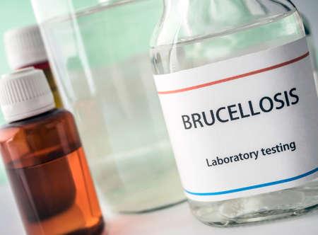Photo pour Test brucellosis in laboratory, conceptual image, composition horizontal - image libre de droit