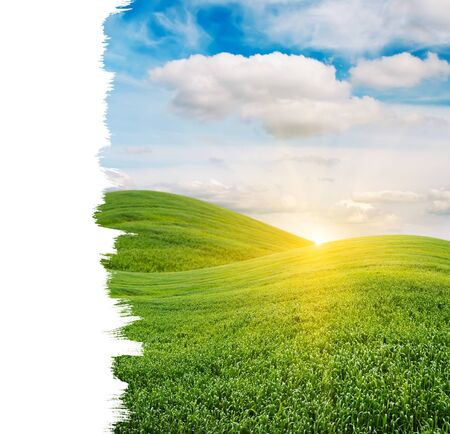 Beautiful Sunrise over Green Field with Copy Space