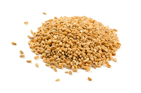 Foto de Wheat Grains Isolated on White Background - Imagen libre de derechos