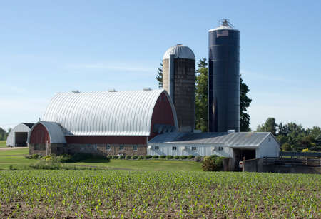 Foto de A well kept barn and two silos on a Wisconsin dairy farm. - Imagen libre de derechos