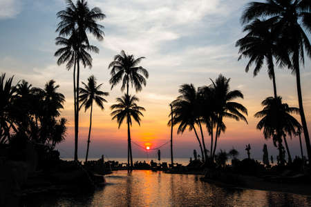 Photo pour Beautiful tropical beach with palm trees silhouettes at dusk. - image libre de droit
