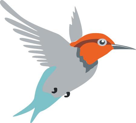 Illustration pour Colibri bird in color 01 - image libre de droit