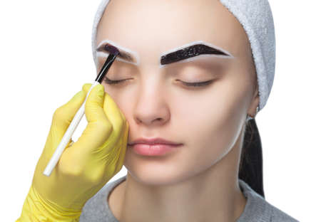Photo pour The make-up artist applies a paints eyebrow dye on the eyebrows of a young girl. Professional face care. - image libre de droit