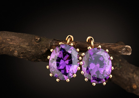 Photo pour Jewelry earrings with gems on twig, dark background - image libre de droit