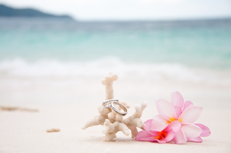 Two wedding rings on coral in front of the seaside