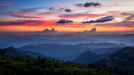 Photo pour Panorama of sunset in mountains with tea plantations. Munnar, Kerala, India - image libre de droit