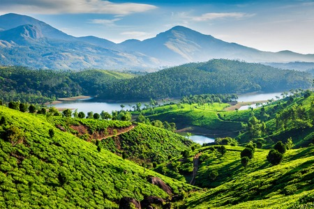 Photo pour Tea plantations and Muthirappuzhayar River in hills near Munnar, Kerala, India - image libre de droit