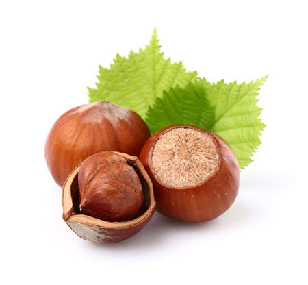 Photo for Hazelnuts with leaves - Royalty Free Image