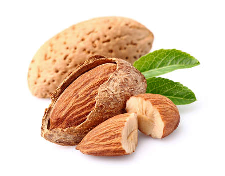 Photo for Almonds kernel - Royalty Free Image