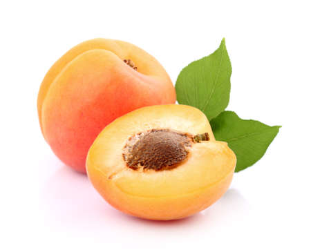 Photo for Apricot in closeup - Royalty Free Image
