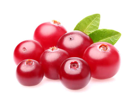 Photo for Sweet cranberry - Royalty Free Image