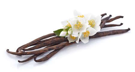 Foto de Vanilla with jasmine - Imagen libre de derechos