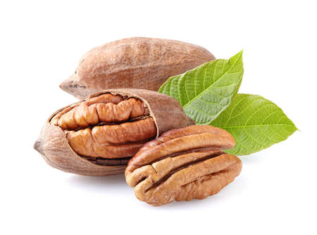 Photo for Pecan nuts - Royalty Free Image