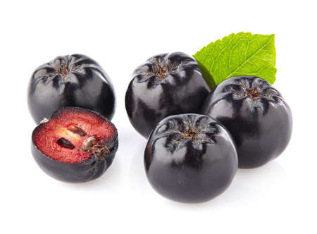 Photo for Chokeberry in closeup - Royalty Free Image
