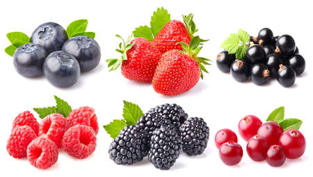 Photo for Berry collage - Royalty Free Image