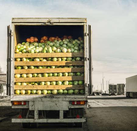 Photo pour trailer laden with cabbage - image libre de droit
