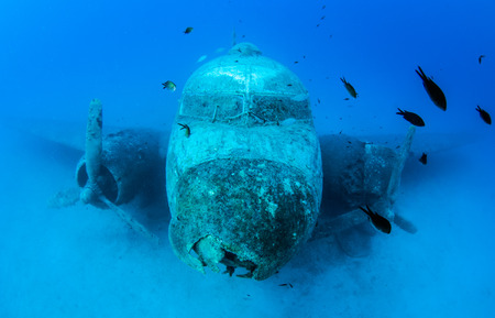 Foto de Wreck diving - Imagen libre de derechos