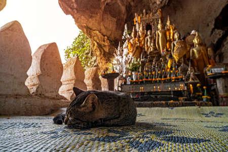 Photo pour Pak Ou Cave on the Mekong River near Luang Prabang, Laos... cave of 5000 Buddhas - image libre de droit