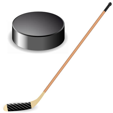 hockey stick and hockey puck