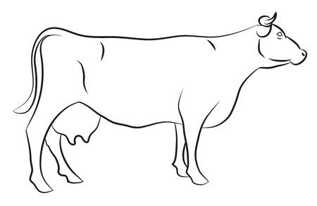 Ilustración de Sketch of a Cow isolated on white - Imagen libre de derechos