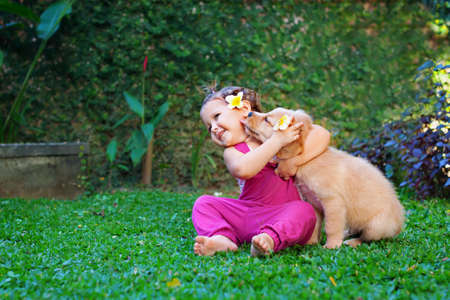 Photo for Funny photo of happy baby hugging beautiful golden labrador retriever puppy. Girl play with dog. Family lifestyle, positive emotions of children fun games with home pet on summer vacation. - Royalty Free Image