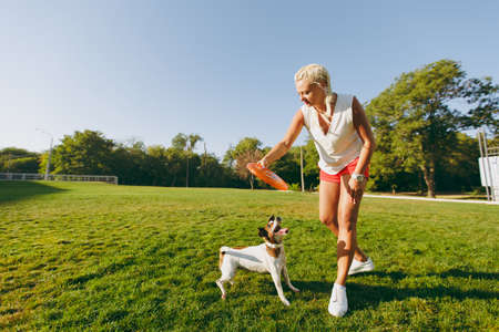 Foto de Woman throwing orange flying disk to small funny dog, which catching it on the grass. Little Jack Russel Terrier pet playing outdoors in park. Dog and owner on open air. Animal in motion background - Imagen libre de derechos